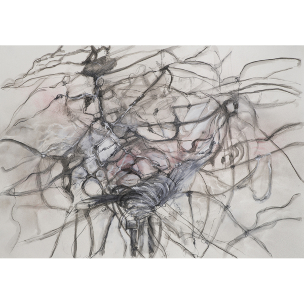 """(Leaving the Nest) #4, Acrylic, spray paint, charcoal, colored pencil on paper, 22"""" x 30"""", $450.00"""